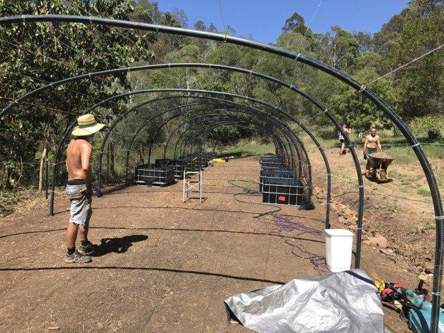 Hoop greenhouse half done